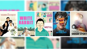 Celebrate AAPI Heritage Month with free-to-stream movies featuring Asian American voices on Tubi