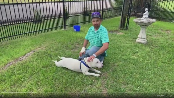 Sulphur Springs man credits his dog for saving him after house catches fire
