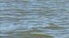 33-year-old man drowns at Grapevine Lake
