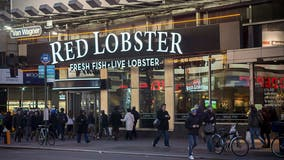 Red Lobster seeking 'Chief Biscuit Officer' in new sweepstakes