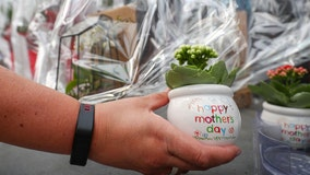 Mother's Day 2021: Ideas for a memorable celebration with mom
