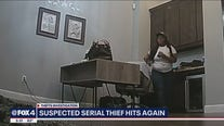 Suspected serial thief hits again