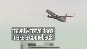Click on Consumer: Travel fees return