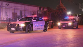 Hit-and-run driver wanted for killing 2 people in Dallas
