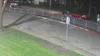 Trackdown: Help find the July 4th Hamilton Park gunmen