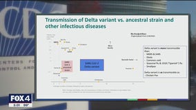 COVID-19 delta variant as contagious as chickenpox, CDC internal docs warn