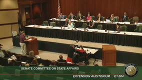 Texas Legislature hears public comment Saturday over proposed voting bills