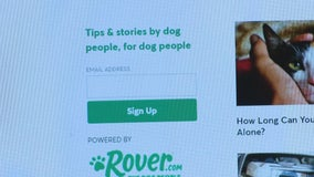 On Your Side: Dog owner warns about hiring sitters through popular pet-sitting app