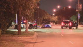 Dallas police responded to 11 street racing/stunting events over the weekend, made 81 arrests