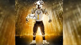 'The Masked Singer' reveals 1st season six costume — and it's 'pawsome'