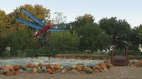 Autumn at the Dallas Arboretum returns with Bugtopia theme