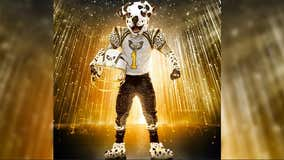 'The Masked Singer': Dalmatian loses spot after 'ruff' performance