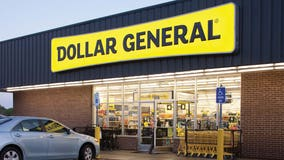 Dollar store chains are leading retail store openings in US: report