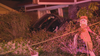 Police searching for driver who crashed car into Dallas home