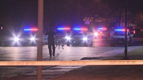 Pedestrian killed in hit-and-run crash in Dallas