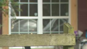 Deputies release name of infant killed after dog bite