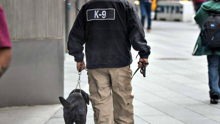 GETTY k9 police dog_1525829097794.jpg-404023.jpg