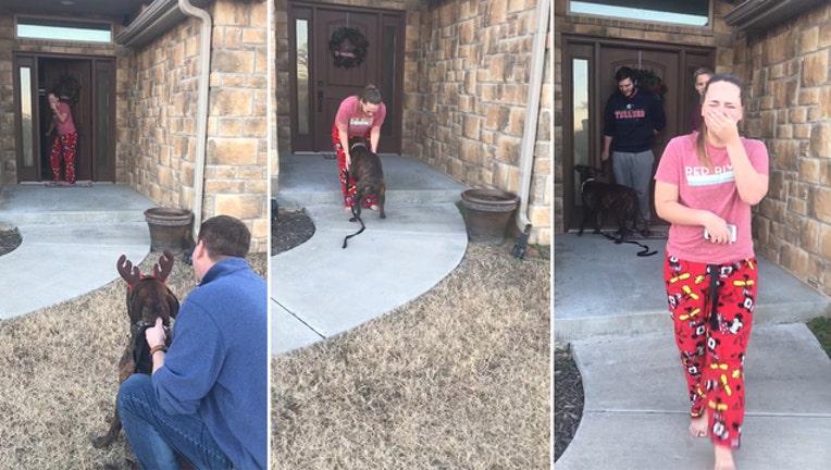 3695e7fe-Oklahoma_parents_secretly_adopt_dog_for__0_20181220103244-401385