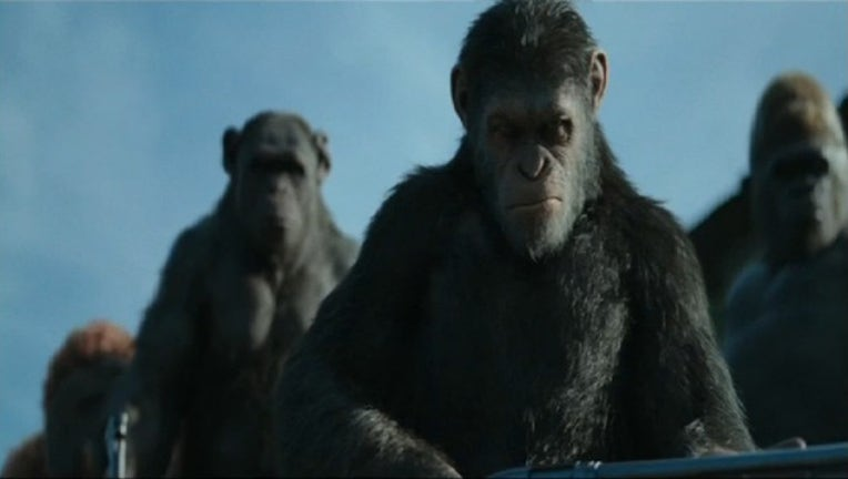 P WAR FOR THE PLANET OF THE APES 7A_00.00.14.26_1500235309919.jpg