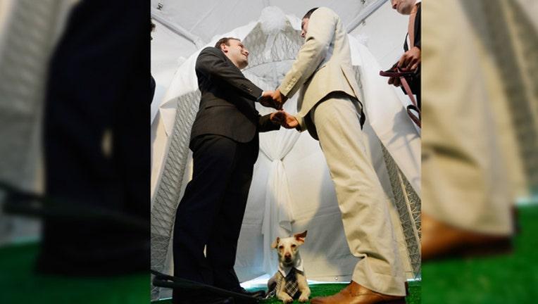 6cfc9ab0-WEDDING-WITH-DOG-GETTY_1538498745825-401720.jpg