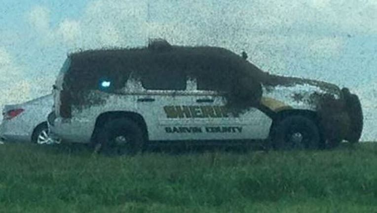 13c29355-Honeybees swarm truck