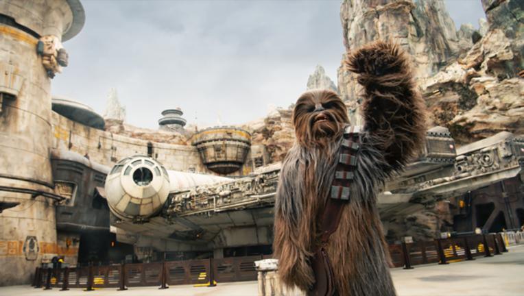 chewbacca star wars galaxy's edge walt disney world hollywood studios-401385.png