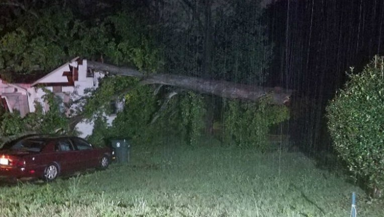 dca74559-tree falls on home_1524484630645.jpg.jpg