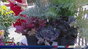 Pike Nurseries: Planting shrubs and trees during the Fall season