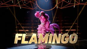 'Party like a flockstar': Flamingo in 'The Masked Singer' season 2 has a leg up on the competition
