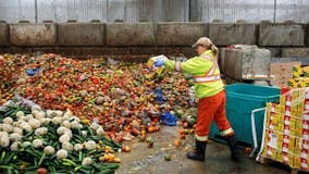 Food waste costs families thousands of dollars a year
