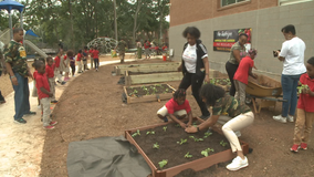 Atlanta students plant garden, learn about healthy eating
