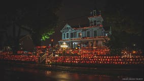 Halloween heaven: Home gets covered in 3,000 hand-carved pumpkins every October