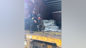 Sheriff: Rescue dog helps GBI find smuggled drugs