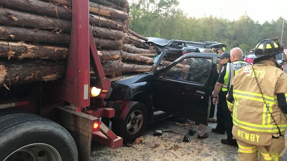 Driver survives harrowing crash as huge logs pierce car