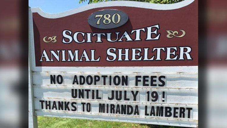e306185f-miranda lambert animal shelter donation_1562790068591.jpg-401385.jpg