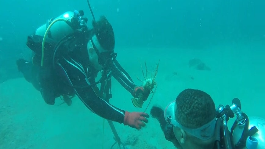 Wounded Warriors go scuba diving