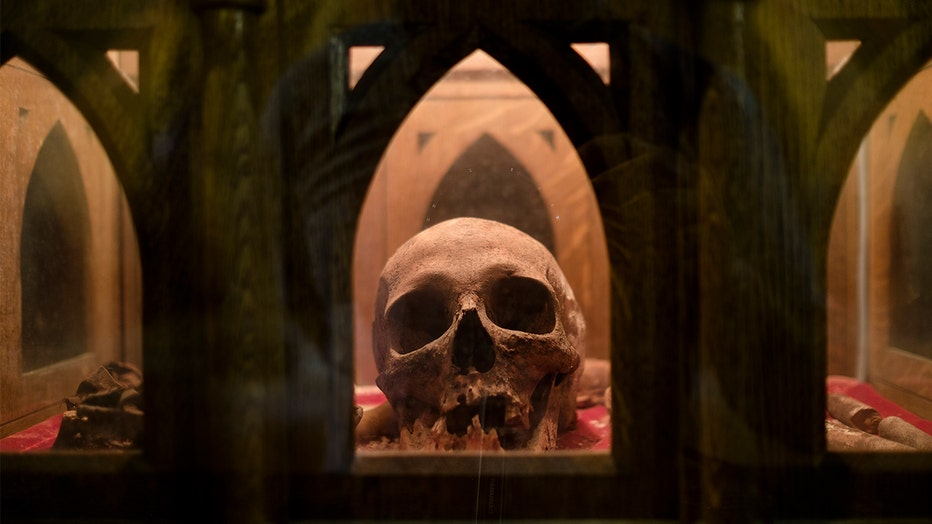 This photograph shows the skull of Nicolas de Fanson (1611/1652), 46th Abbot of Saint Hubert, on display Minor basilica of Saints-Pierre-et-Paul (Saint-Hubert).
