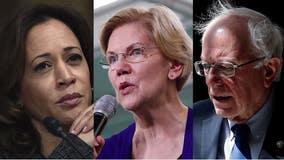 10 Dems qualify for next week's presidential debate