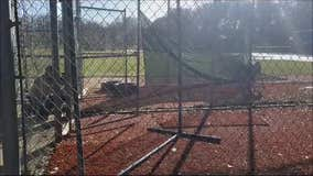 Deer gets caught in batting cage net