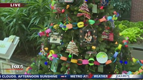 Festival of Trees - 10AM