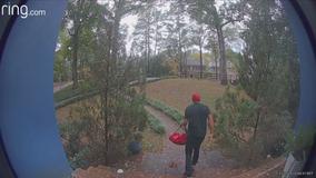 Fake pizza delivery porch pirate strikes again