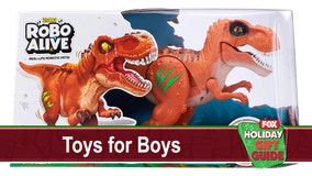 Have a blast with these 10 toys ideas for boys