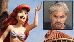 Deputies: Man arrested after groping cast member at Walt Disney World