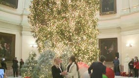 Tree lighting ceremony at State Capitol
