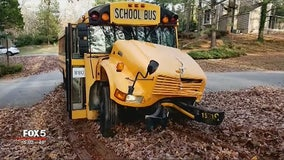 Police: DeKalb County school bus crashes into tree, 1 minor injury
