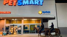 Police horse makes 'nice list,' goes holiday shopping at PetSmart