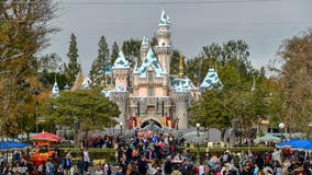 Disneyland temporarily stops selling tickets for the day after reaching capacity