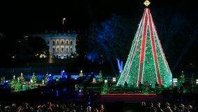 National Christmas Tree Lighting tonight at the Ellipse