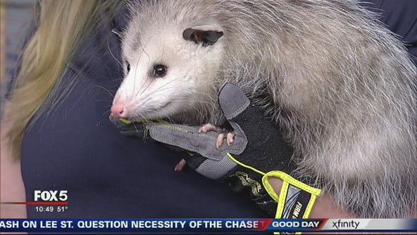 Pet of the Day: December 6, 2019