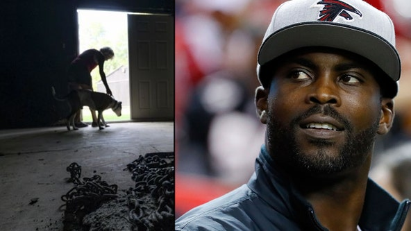 Michael Vick to still be honored at Pro Bowl in Orlando despite petition